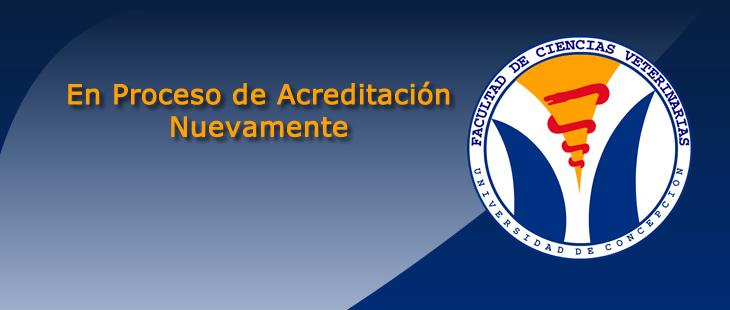 acreditacion2012