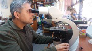 proyecto-fondecyt-dr-gonzalez_tn